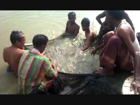 fishing in bangladesh
