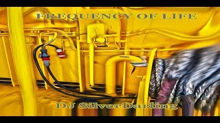 DJ SilverDarling / Frequency Of Life / REMIX Video