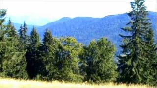Relaxing Music Therapy - Relaxing Nature Scenes  BUKOVINA    HD