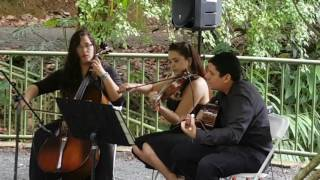 A Time for Us - Romeo & Juliet Theme -  LIVE- Eleganza String Trio