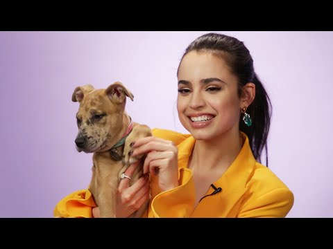 Sofia Carson Plays With Puppies While Answering Fan Questions