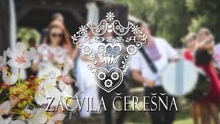 ROSSA - Zacvila čerešňa 2017