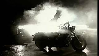 Caballo Dorado - EL CRUEL - [Video Oficial]