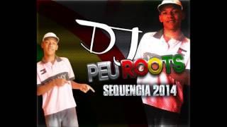 Melo de MARCELA 2014  DJ PEU ROOTS O GAROTÃO DA JAQUEIRA