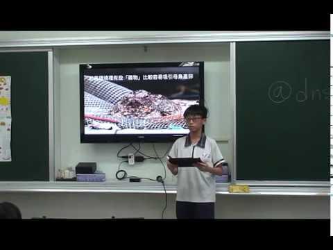 探索夜鷹 - YouTube