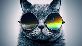 "Funky Rap / Hip-Hop Instrumental - ""Cool Catz"" | Jazzy Guitar Beat | Syko Beats"