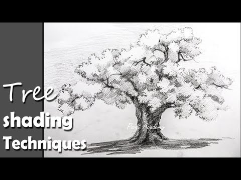 Pencil Drawing | How to Draw A Tree in Pencil with proper shading techniques