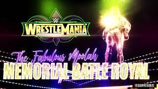 "WWE WrestleMania 34 The Fabulous Moolah Battle Royal Promo Theme Song - ""Wild Things"""