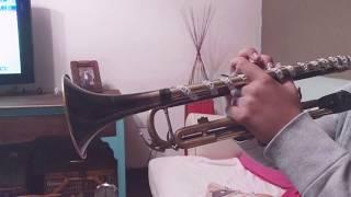 Despacito -Luis fonsi            »En Trompeta