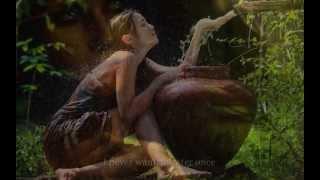 Cat Stevens - The Wind (The Wind lyrics on screen)