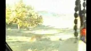Erkec Ve Boyali Köyünden Görüntüler