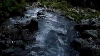 Relaxing Sounds of Nature Mountain Stream