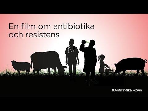 Antibiotikaskolan
