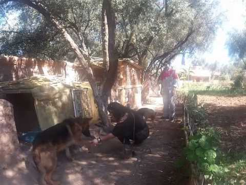 Morocco2/3 jan13