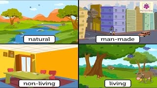 Natural And Man Made Things   Environmental Studies For Kids   Grade 3   Vid #1