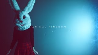 CHAOS EMERALDS - ANIMAL KINGDOM (official video)
