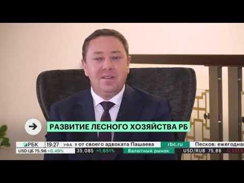 Интервью. Марат Шарафутдинов, министр лесного хозяйства РБ, канал РБК