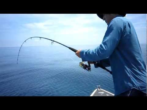 Przez przypadek złowił rekina!