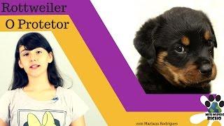 Rottweiler - O Protetor