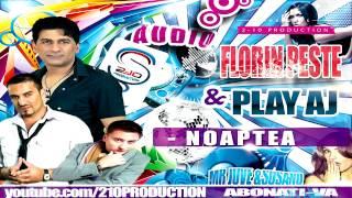 Florin Peste & Play AJ - Noaptea