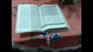 2 Cronicas 7 14