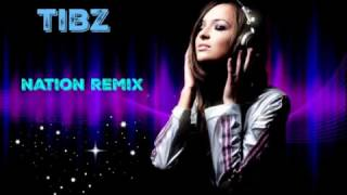 tibz nation remix