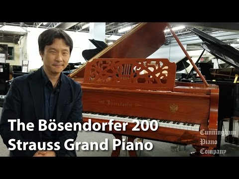 Bösendorfer 200 Strauss Grand Piano