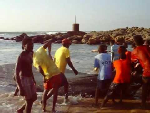 sardines hibberdene beach