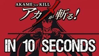 Akame Ga Kill In 10 Seconds