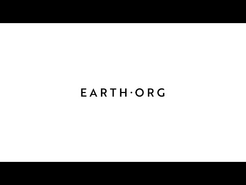 Earth.Org Introduction