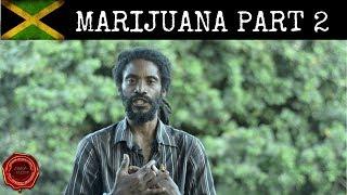 MARIJUANA AND SMOKING | PART 2 width=