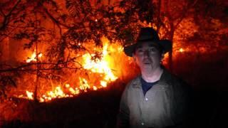 Florestas em chamas nos cerrados do Piauí no Domingo Incrível