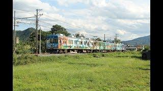 EJP074050 Japan train animal design paiting Japonské osobní vlaky tren រថភ្លើង ជប៉ុន ລົດໄຟ ຍີ່ປຸ່ນ