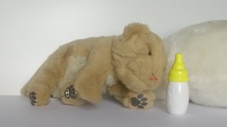 WowWee Alive Mini Lion Cub Robotic Animal [HD]