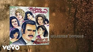 Vicente Fernández - Mujeres Divinas  (Cover Audio)