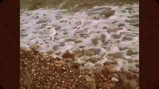 Μέλισσες - Όλα μοιάζουν καλοκαίρι (lyrics)