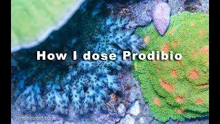 How I dose Prodibio's Bioptim, Biodigest, Stronti+ and Iodi+