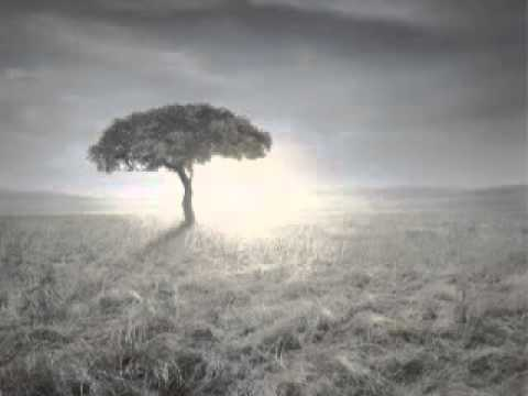ALLAH(C.C)´DAN NASIL COCUK iSTEMELi - HZ.ZEKERiYA(A.S) DUASI - sofilerden ilahiler