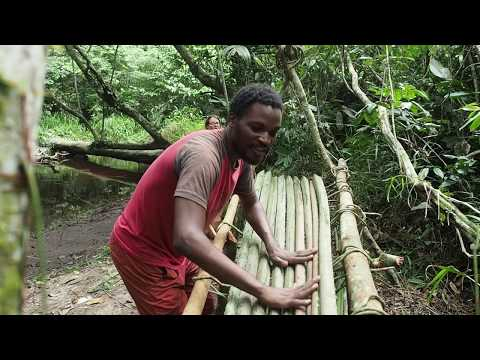 Building A Primitive Jungle Bed