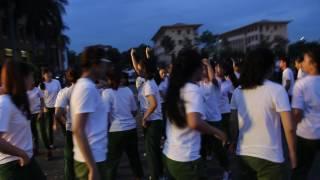VHNN flashmob