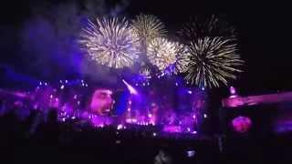 David Guetta Tomorrowland Brasil 2015