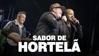 Samprazer - Sabor de hortelã (DVD Olha o Nosso Samba) Part. Ferrugem