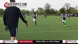 Porto Alegre vs. Gallos Rojos Liga Douglas Verano 2018