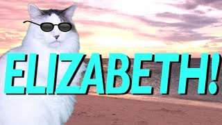 HAPPY BIRTHDAY ELIZABETH! - EPIC CAT Happy Birthday Song