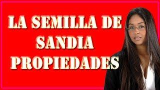 Semilla de Sandia Propiedades