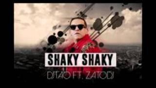 SHAKY SHAKY- djTAO ft. ZATO dj