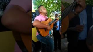 Orlando cigano