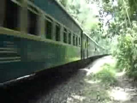 Bangladesh Railway Down Paharika Intercity Express is crossing Lawachara Forest.mp4