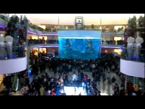 Morocco Mall – Hall de l'aquarium – Dalle lumineuse