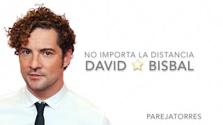 No Importa La Distancia - David Bisbal (con letra) (We Love Disney Latino)